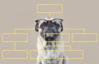 «Шахерезада 21 века»: почему сторителлинг для бизнеса -  самый эффективный инструмент маркетинга