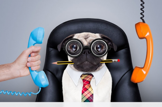 Эффективное управление бизнесом: как победить прокрастинацию и вывести команду на новый уровень